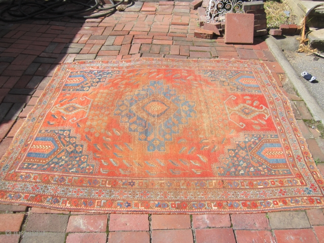 """antique persian rug, probably a larger than normal Afshar , great colors 5' 1"""" x 6' 6"""" as shown worn missing one corner no dry rot no holes 385.00 plus shipping SOLD  ..."""