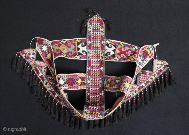 Late 19 century Uzbak Lakai Horse head dress.