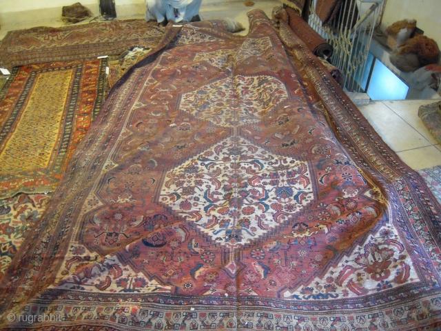 Large Qashgai 12x7.5 ft