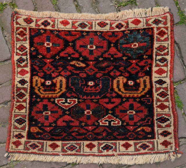 Veramin Kurdish bagface, beautiful intense natural colours and good wool, the sides are secured, hand washed. 43 x 36 cm.