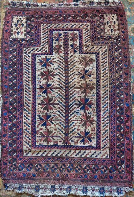 Small Baluch prayer rug. Several features more typically associated with 'Timuri' varriants but with a camel instead of a blue ground. Nice flatwoven email. Some staining in the top right field. Nice  ...