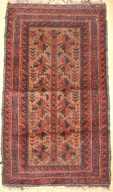 "Beluch balisht, 19th c, 37 x 22"", 94 x 56 cm,in rather good condition"
