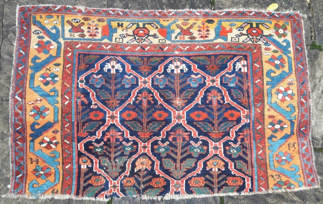 Late 19th century Kurdish fragment, faboulous colour, full pile. 31in by 51in