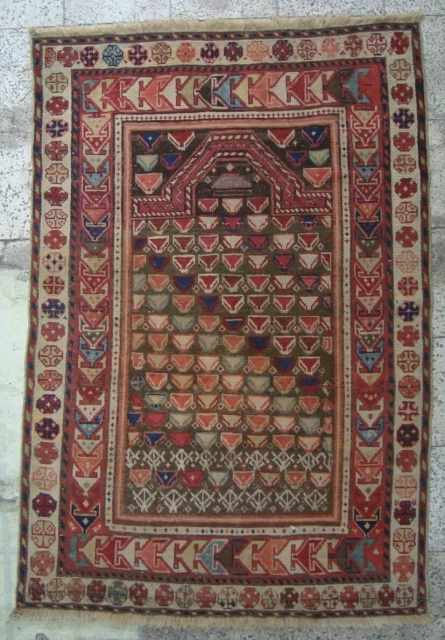 Shirvan  Marasali ( prayer ) rug