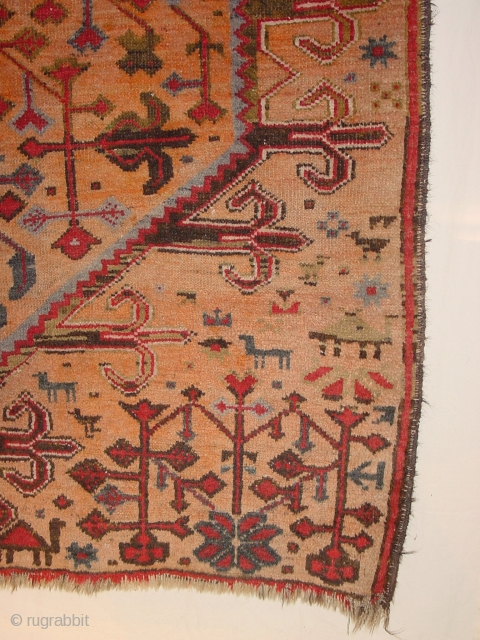 ANTIQUE KHOTAN good condition!!! with camels and wolves, 110x197cm  3.7x6.6ft