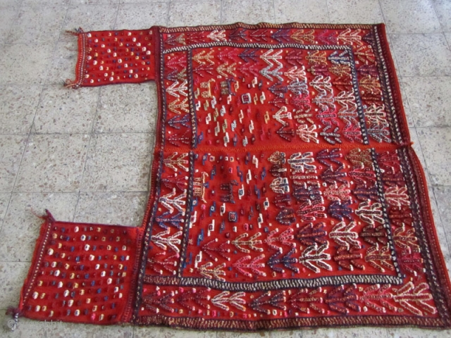 Qashqai horse cover in fine condition