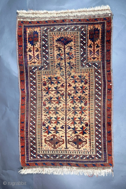 Baluch prayer rug, Northeast Persia, ('----to see takes time.'), for those willing to invest time to see, this special rug reveals its magic, the field consists of actual camel hair rather than  ...