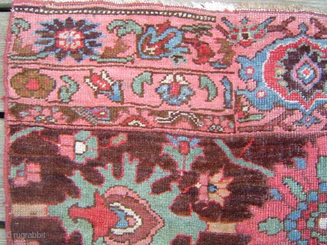 19th century Bijar vagireh