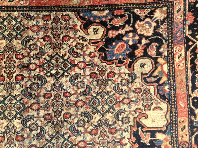 """Fereghan Sarouk, 1890-1900, 41""""x60"""", 18 vertical, 18 Horitzontal, soft flexible handle, no dry areas. Some moth areas on side, and one end, pictured. Missing at one end is a 15 1/2"""" area,  ..."""