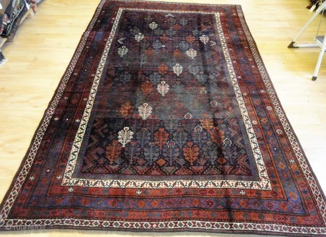 Good Kurdish or Baluch rug with shrub design, size: 263 x 174cm.