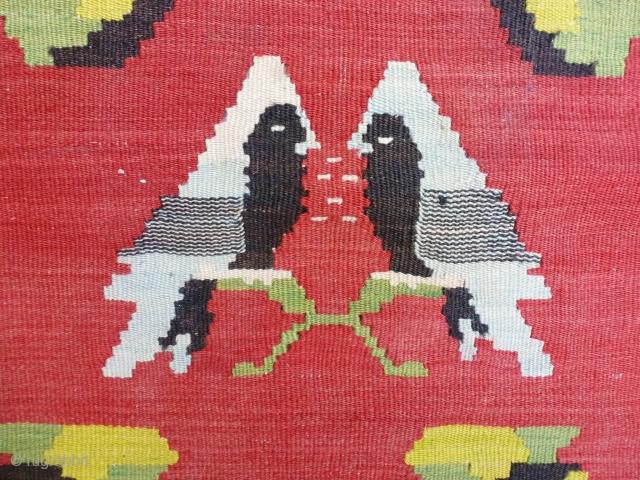 BESSARABIAN circa 1900 295 X 212 Summer butterfly ?
