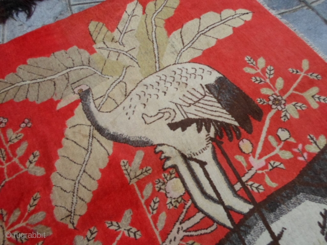 Ancien KHOTAN-UIGHUR in very good condition, original size, full pile without restors. Design the KING of the birds. Great wool and wonderfull color has this carpet. Size cm 261 x 170 cm. More info and photos on  ...