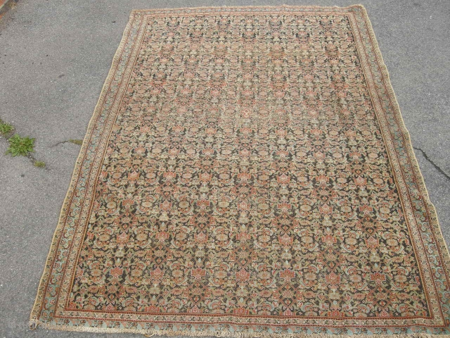 Fine antique Senneh, low in pile , very decorative sides not original old hanging rings, very fine needs a clean, very chic. 6ft 4 x 4ft4