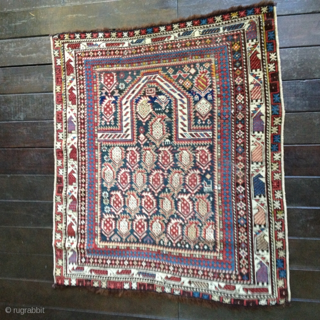 "Antique ""Black"" Marasali Shirvan Prayer rug. Very good condition with all organic colors including a beautiful medium blue. Medium to low pile with a few minor repairs. Ends have been stabilized. Size:  ..."