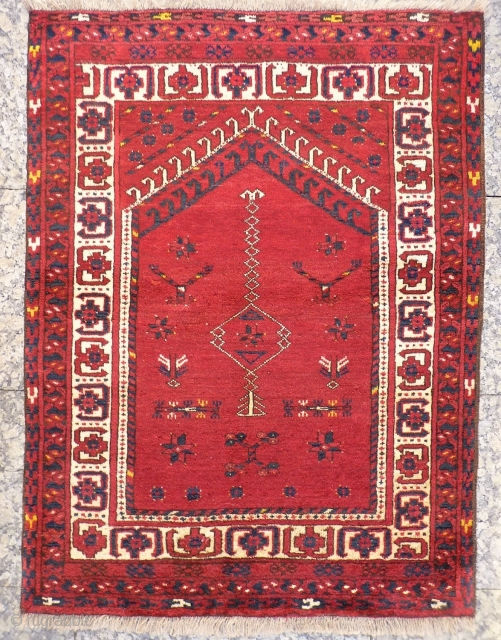 For this tightly woven Ersari rug, only the best quality soft and shinny wool has been used. The white strong and more formal border, frames a very interesting field filled with an  ...
