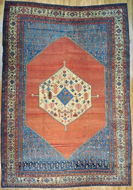 Bakshaish Persian Rug 13 10 Quot X 19 6 Quot Type Authentic