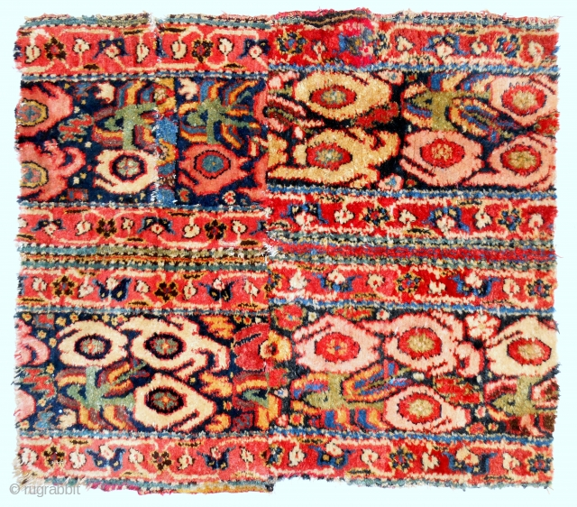 17th c. Khorassan rug assembled border fragment (about 2 ft square). Full, resplendent pile!
