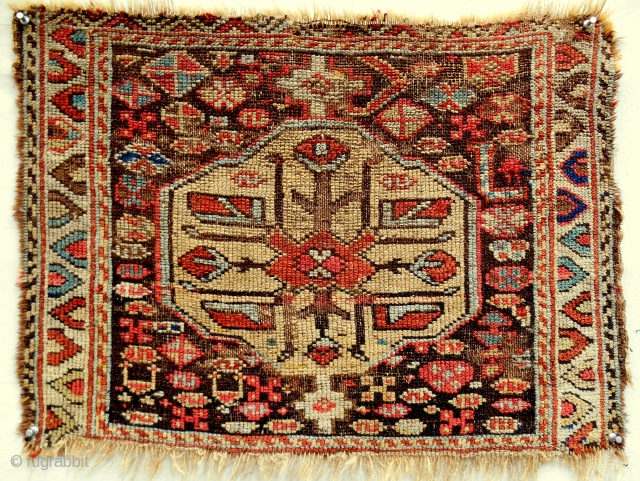 A lovey and rare Kurdish pile bagface with archaic drawing. Circa 1870 or older.