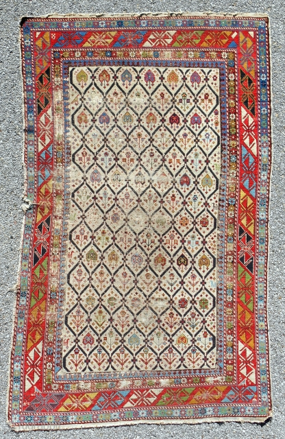 Shirvan rug with very good color range and design diversity. Very low pile. All natural colors. No repairs. Circa 1870.
