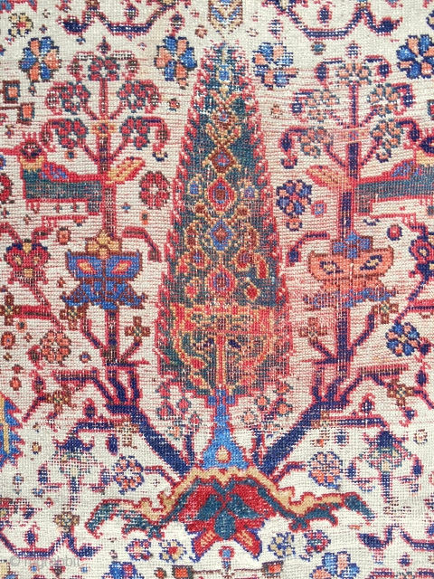 "1860-70 Persian Afshar white ground ""Cypress"" rug. Complete, original with very good drawing and clear color. Very low pile with wear."
