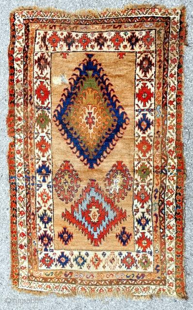 Dramatic Persian Bijar camel field rug > c. 1850-70.