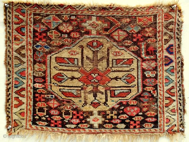Moghan steppe Shahsavan bagface. Mid 19th c. Rare!