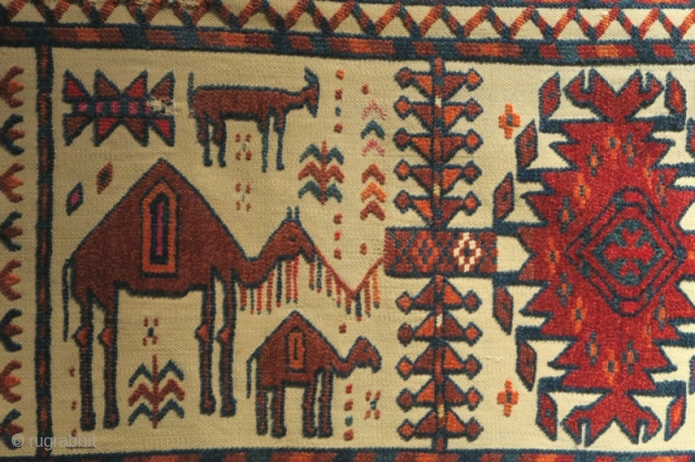 This Turkmen tent-band fragment draws stylized blossoming trees in wool pile with silk highlights. Of particular merit is the inclusion of three animals, a goat and two camels, perhaps a mother and  ...