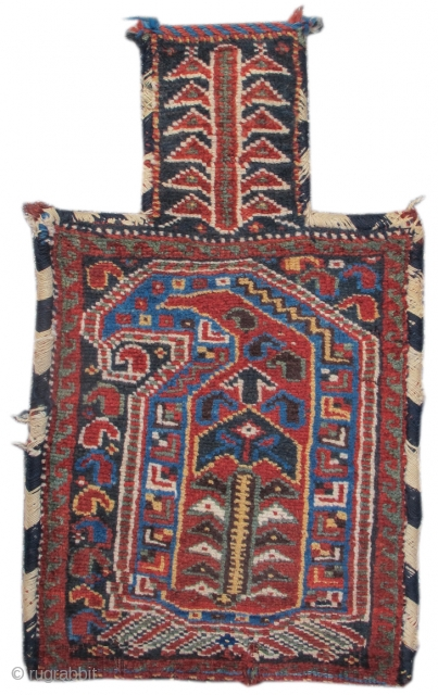Afshar pile saltbag: A large solitary 'boteh,' or paisley, is colorfully drawn in pile to fill almost the entire field of this Afshar salt bag. As a flowering shrub is rendered in  ...