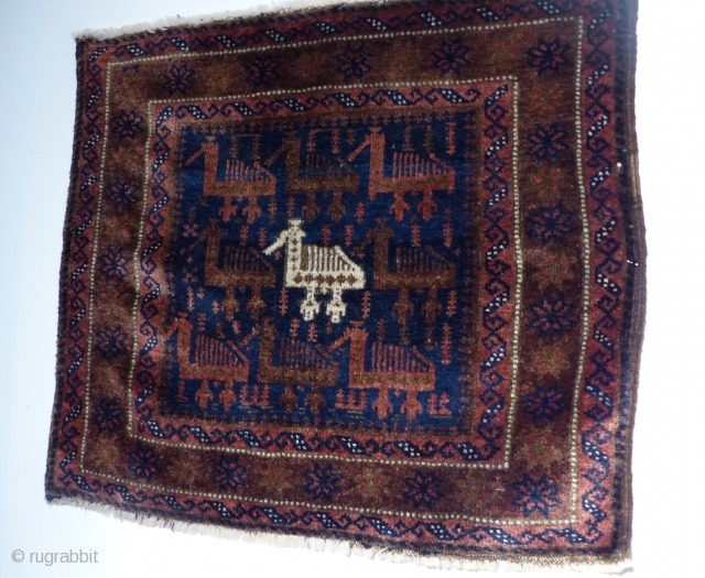 Beluch with beautiful and rare design of chickens. High wool and all natural colors. Great condition. A true collectors item! 