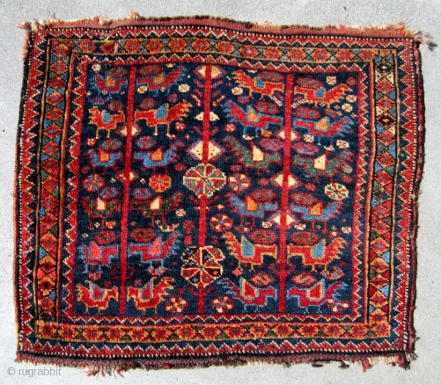 "A 19th C. Khamseh bagface, 21"" x 21"", with an attractive and hard to find bird design. All natural dyes and shiny wool. The colors are softer and have a darker cast  ..."