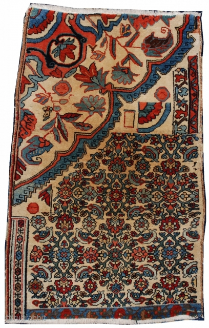 #6899 Persian Bidjar Vagireh Weigareh Rug Sampler