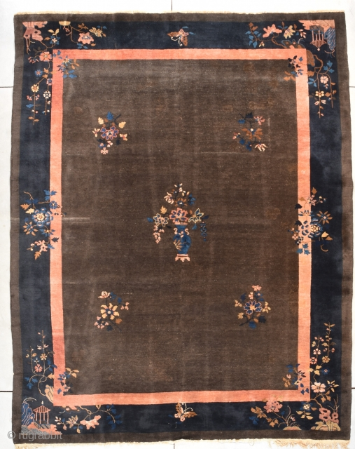 """Antique Peking Chinese Rug  #7850  This antique Peking Chinese rug measures 9'0"""" X 11'5"""". It has a deep chocolate brown field with five multi-colored flower sprays in the field, one of which  ..."""