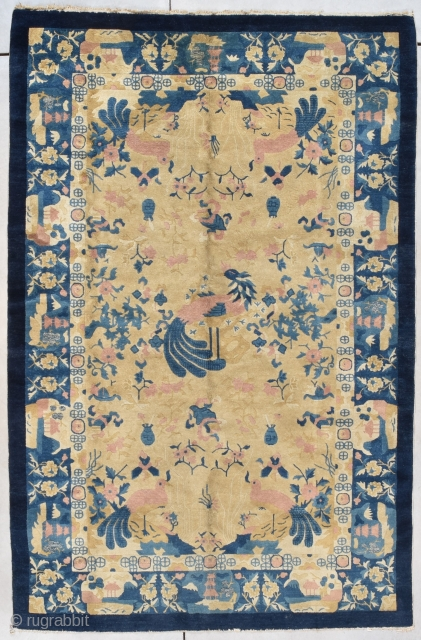 """This circa 1900 Peking Chinese Rug #7970 measures 4'3"""" X 7'11"""". There is a pair of pink birds with large blue tails and tongues. Another large bird serves as a center medallion  ..."""