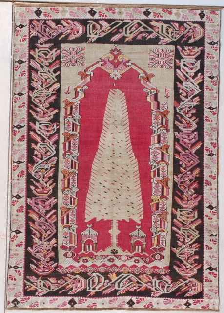 #7625 Melez