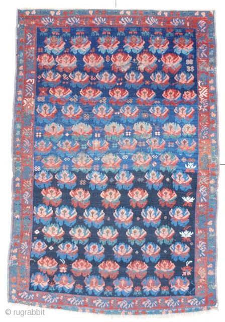 """#6421 Seyhore Kuba Antique Caucasian Rug This circa 1870 Seyhore Kuba measures 3'10"""" X 5'8"""". It has a lovely repeated design of carnations in pink, green, red and blue on a nicely abrashed  ..."""