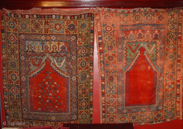 Exhibition Announcement: Turkish Prayer Rugs,  Part 1 from Jim Dixon's Hesperides Collection. Click on the link or look in Rugrabbit's Exhibitions section to view. http://www.rugrabbit.com/node/21977