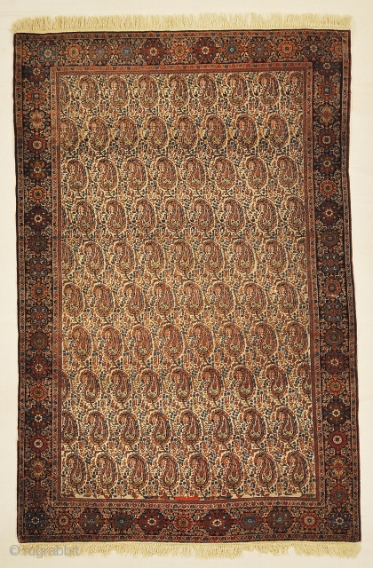 Fine Antique Sarouk Farahan Botteh with Rare Ivory Background Genuine Woven Carpet Art