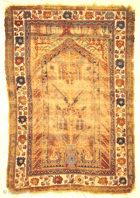 "Rare Classical Milas Prayer Rug from Turkey  - Size: 3'7"" x 5'2"""
