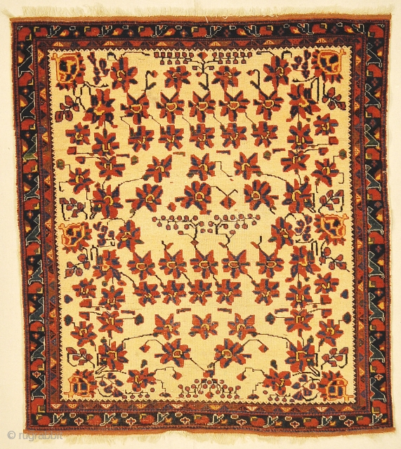 Antique Persian Afshar with All Over Floral Genuine Woven Carpet