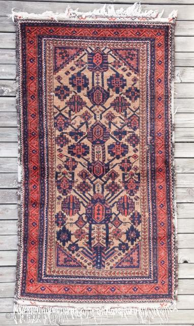 Arab Baluch 90 x 170 cm / 3'0'' x 5'7''
