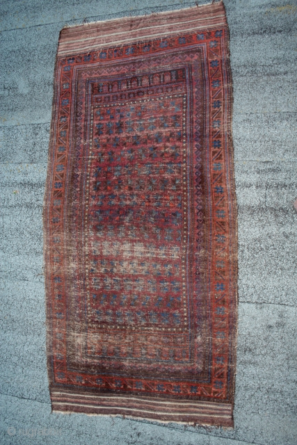 antique Large purple ground  Baluch Timuri 19th c.,tree of life, coloured and serrated leaf design & interesting empty space design   SE persia with kilim ends