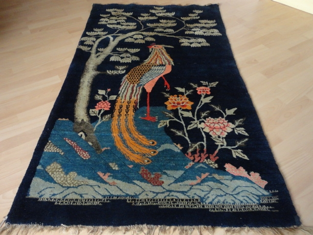 Antique  Bao Tao  Pictural  PhoeResonablenix  Chinese rug  98 X 166 cm.