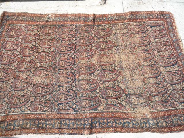 Antique persian senneh rug