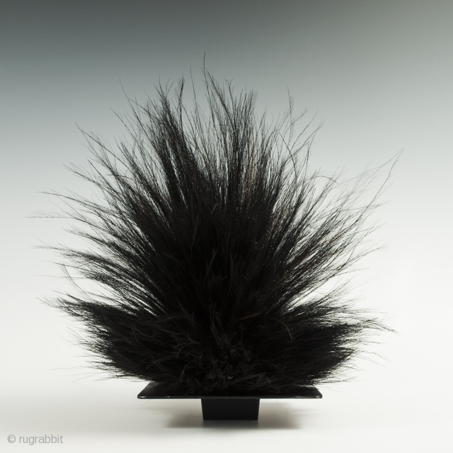"""Cassowary feather headdress, Western Highlands, Papua New Guinea. Cassowary feathers, string, Mid-20th century, 16"""" (40.6 cm) high. This cassowary feather headdress is just placed on a black metal frog, which will be  ..."""