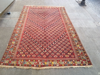 Antique Caucasian Shirvan Carpet size 265x155