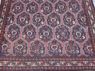 Antique Khamseh Rug , SW Persian , Early 20th century ,7.4 x 5.2