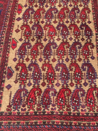 Baluch camel hair rug with boteh pattern, usually reserved for prayer rugs. Full pile, pristine condition. Best natural colors (also the purple), crisp and well proportioned drawing, jewel of a rug. Size  ...