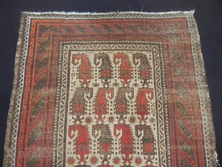 Old Baluch Carpet