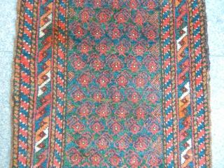 Baluch Balısh