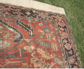 Antique Estate Heriz. It had been lightly painted like the old Sarouks. If you look at the picture of the rug rolled up you can better tell what the original color was,  ...